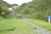 八斗子藻樂趣:DSC_0033.JPG