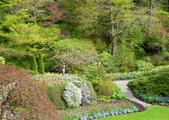 維多利亞布查花園:維多利亞布查花園_1000420_0510 882.jpg