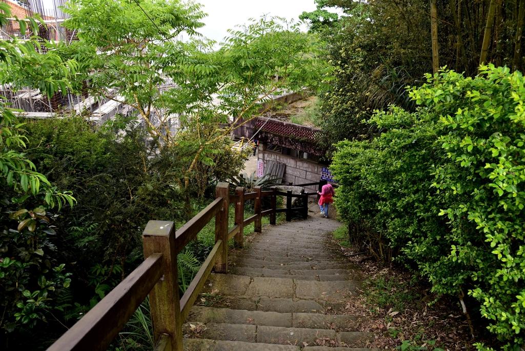 二尖山步道 (17).JPG - 二尖山步道,碧湖山觀光茶園,麗景精品休閒旅館