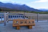 北海道-知床五湖:知床五湖 (26).JPG
