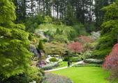 維多利亞布查花園:維多利亞布查花園_1000420_0510 883.jpg