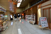北海道(道東,道央):DSC_0764.JPG