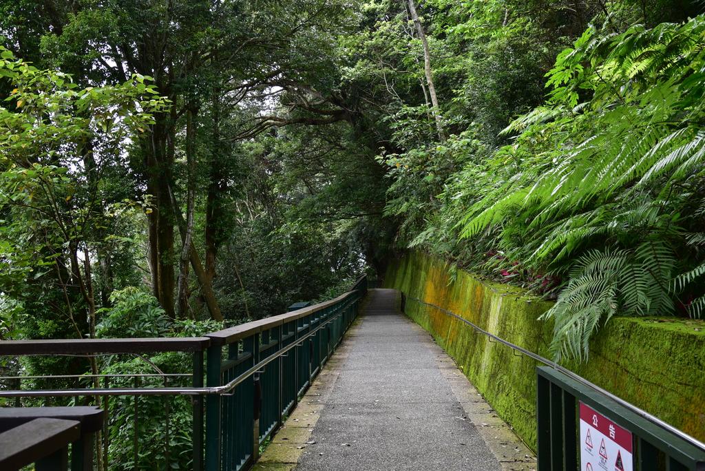 日月潭自行車道-向山段:DSC_9100.JPG