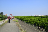 新竹市十七公里海岸風景區:_DSC0100.JPG