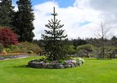 維多利亞布查花園:維多利亞布查花園_1000420_0510 896.jpg