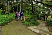 石門山登山步道,石門水庫:石門山登山步道 (9).JPG
