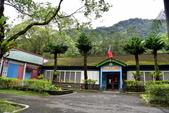 林田山林業文化園區,大農大富平地森林園區 :DSC_5154.JPG
