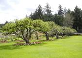 維多利亞布查花園:維多利亞布查花園_1000420_0510 898.jpg
