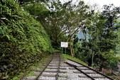 林田山林業文化園區,大農大富平地森林園區 :DSC_5161-1.JPG