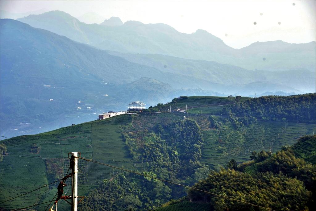 二尖山步道 (6).JPG - 二尖山步道,碧湖山觀光茶園,麗景精品休閒旅館