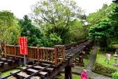 林田山林業文化園區,大農大富平地森林園區 :DSC_5162.JPG
