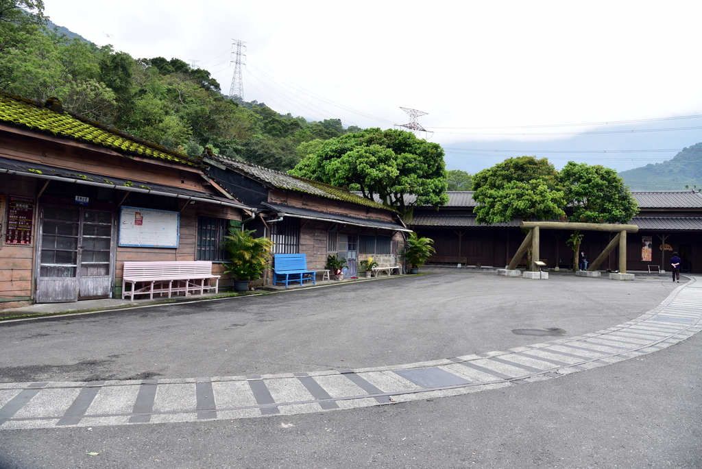 DSC_5175.JPG - 林田山林業文化園區,大農大富平地森林園區