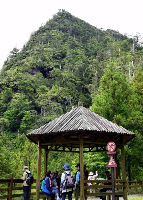 榛山森林浴步道 (12).JPG - 觀霧國家森林遊樂區-大鹿林道西線,榛山森林浴步道