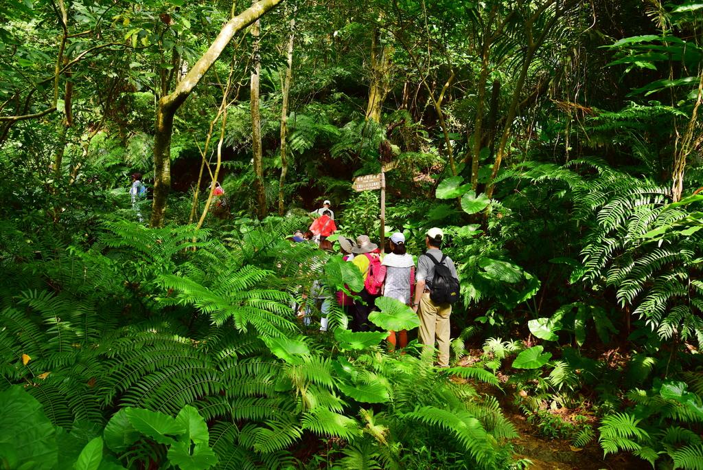 富陽自然生態公園 (27).JPG - 富陽自然生態公園