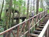 明池國家森林遊樂區:明池國家森林遊樂區 052.jpg
