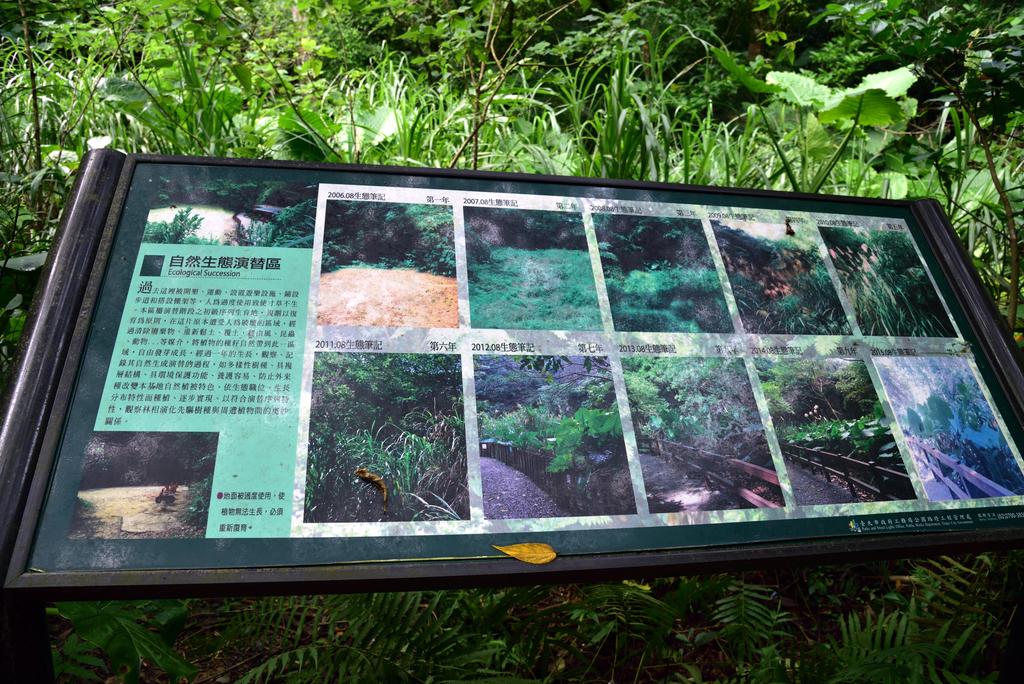 富陽自然生態公園 (16).jpg - 富陽自然生態公園