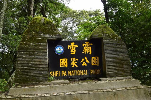 大鹿林道西線 (3).JPG - 觀霧國家森林遊樂區-大鹿林道西線,榛山森林浴步道