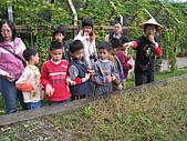 台大蔬果生態體驗半日遊20081214:IMG_1934.JPG