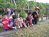 台大蔬果生態體驗半日遊20081214:IMG_1935.JPG