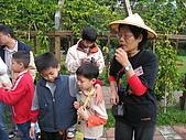 台大蔬果生態體驗半日遊20081214:IMG_1938.JPG