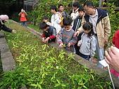 台大蔬果生態體驗半日遊20081214:IMG_1943.JPG
