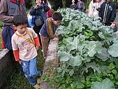 台大蔬果生態體驗半日遊20081214:IMG_1946.JPG