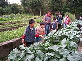 台大蔬果生態體驗半日遊20081214:IMG_1947.JPG