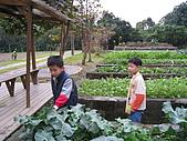 台大蔬果生態體驗半日遊20081214:IMG_1948.JPG