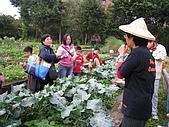 台大蔬果生態體驗半日遊20081214:IMG_1949.JPG