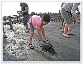 鹿港王功之旅20080927:王功採蚵.JPG