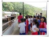 金雞蛋農場校外教學:IMGP0213.jpg