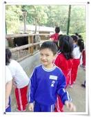 金雞蛋農場校外教學:IMGP0214.jpg