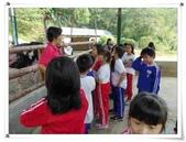 金雞蛋農場校外教學:IMGP0216.jpg