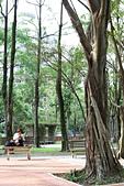 9.29 中強公園&虎山峰:IMG_0559.jpg