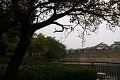 10.25 雨霧行的大阪城公園.四天王寺.OSAKA Marathon EXPO.通天閣:IMG_1663.jpg