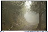 太平山之旅-山毛櫸國家步道:IMG_1667.jpg