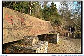 太平山之旅-山毛櫸國家步道:IMG_1641.jpg