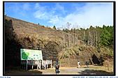 太平山之旅-山毛櫸國家步道:IMG_1642.jpg