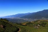 7.28 六十石山、雲山水:IMG_0634.jpg