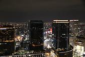 10.27-28 梅田夜景.大阪城最後一暼.住吉大社:IMG_2417.jpg