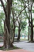 9.29 中強公園&虎山峰:IMG_0565.jpg