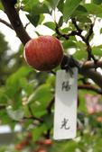 梨山->福壽山農場:IMG_0535.jpg