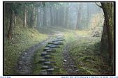 太平山之旅-山毛櫸國家步道:IMG_1681.jpg