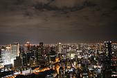10.27-28 梅田夜景.大阪城最後一暼.住吉大社:IMG_2429.jpg