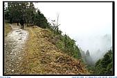太平山之旅-山毛櫸國家步道:IMG_1650.jpg