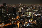 10.27-28 梅田夜景.大阪城最後一暼.住吉大社:IMG_2451.jpg