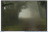 太平山之旅-山毛櫸國家步道:IMG_1700.jpg