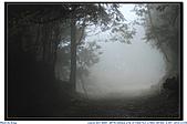 太平山之旅-山毛櫸國家步道:IMG_1659.jpg