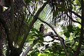 10.13植物園:IMG_0982.jpg