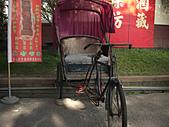 中社花園:CIMG0144.JPG